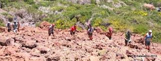 Paso por el Roque de los Muchachos (184)
