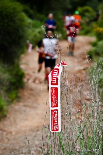 Penyagolosa trail (180)