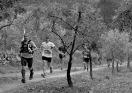 Penyagolosa trail (259)