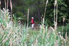 Penyagolosa trail (298)