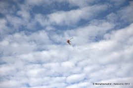 Salida y paso por Gornergrat - Matterhorn ultraks (83)