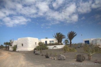 Teguise - Famara (340)