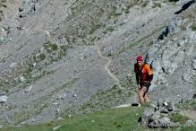 Transvaldeonica (50)