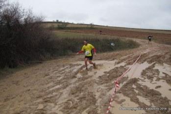 Trail del Serrucho 2014 (6)1