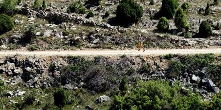 fotos csp115 penyagolosa trails por mayayo 25