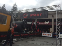 Swissirontrail 2014 (65)