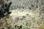 160-trailmadrid2015-159